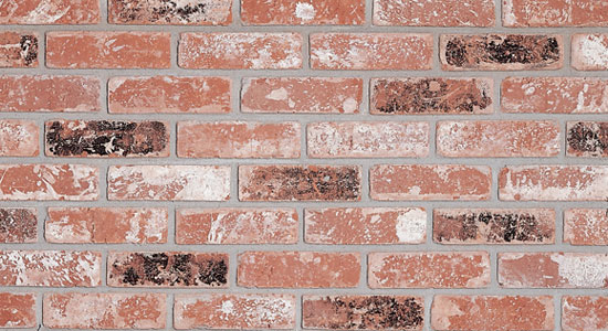 Rustic Brick Veneer Old California Series  Brick America