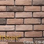 Citrus Old World Brick
